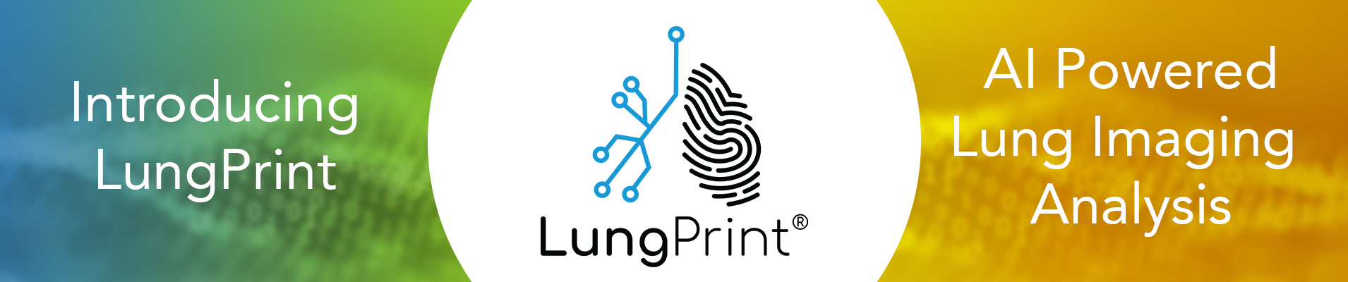 04-lungprint